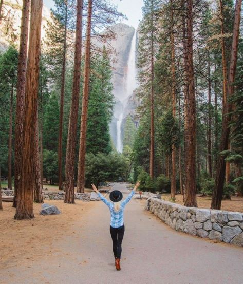 Aramark_Yosemite_National_Park_03