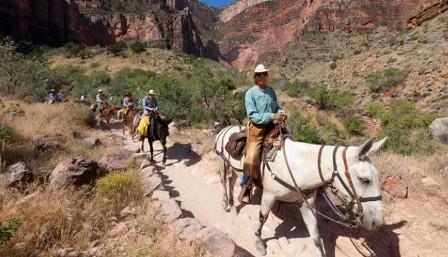 Xanterra_Grand_Canyon_South_Rim_02